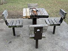 Minneapolis - Park Picnic