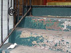 Minneapolis - Turquoise Stairs