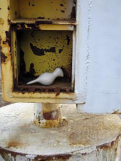 Minneapolis - Yellow Rust Box