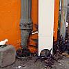 New Orleans - Orange Wall