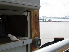New Orleans - Pier Portal
