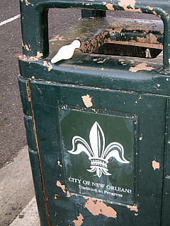 New Orleans - Trash