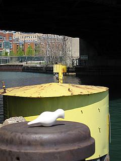 Chicago - Under Bridge