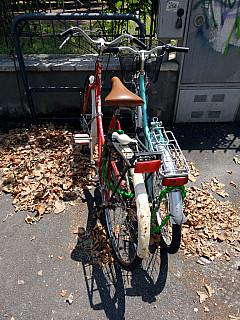 Italy, Florence - Bike