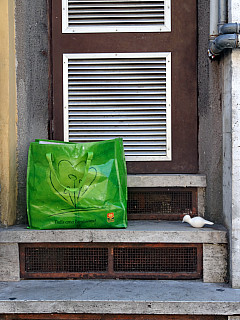 Italy, Rome - Green Bag