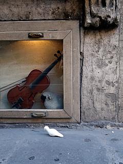 Italy, Rome - Violin