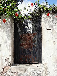 Morocco - Rusty Door 1