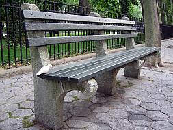 New York - Park Bench