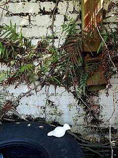 Savannah, Georgia - Faded White Brick