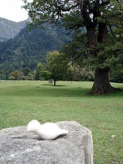 Gerda, Switzerland - Stone + Pasture