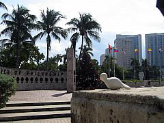 Miami - Coast Buildings