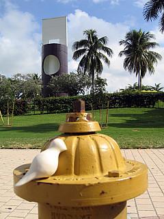 Miami - Hydrant