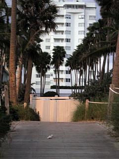 Miami - Night Walk