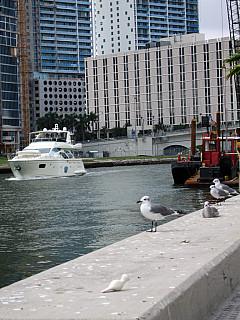 Miami - Water Way