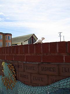 San Francisco - Beach Wall