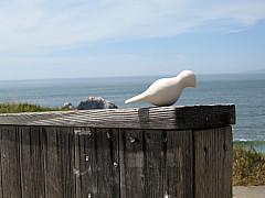 San Francisco - Beach