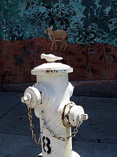 San Francisco - Hydrant