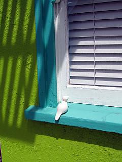 San Francisco - Lime Window