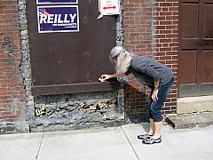 Boston - Sandy
