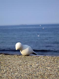 Boston - Sea