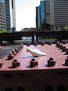 Chicago - Bridge Perch