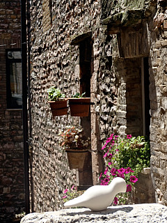Italy, Assisi - Flower Perch