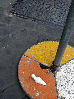 Italy, Rome - Street Sign Pole