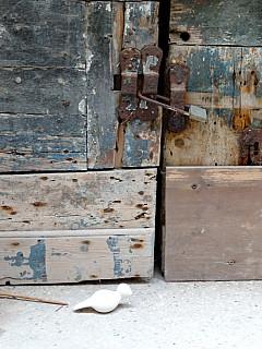 Italy, Venice - Blue Rust