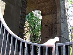 Rochester - Arch