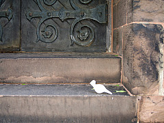 Rochester - Church Step