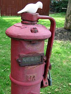 Rochester - Red Pump