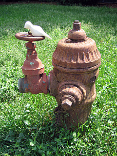 Rochester - Wheel Hydrant