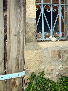 Israel - Old City Window