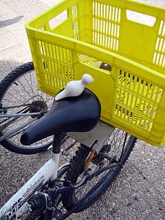 Israel - Yellow Basket