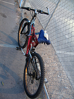 Las Vegas - Bike