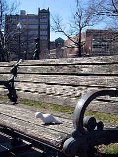 Rhode Island - Bench