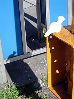Seattle - Blue Shadow