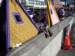 Seattle - Purple Tent