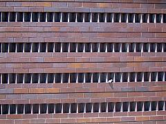 DNC - Brick Wall