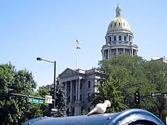 DNC - Capital Building