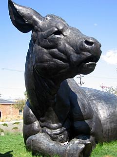 DNC - Cattle Scuplture