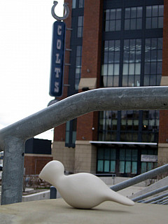 Indianapolis - Colts