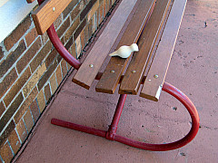 Indianapolis - Dove House Bench