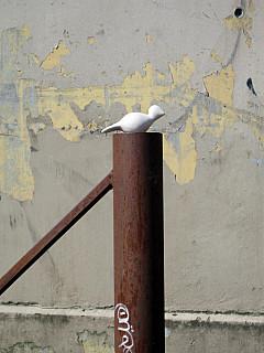Portland - Graffiti Pole