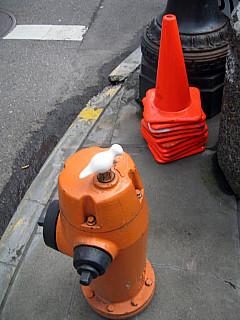Portland - Orange Fire Hydrant