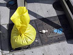 Portland - Yellow Bag