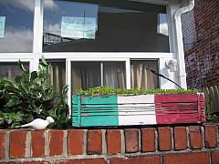 Baltimore - Little Italy Planter