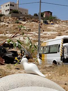 Palestine - Bus Camp