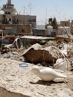 Palestine - Refugee Camp
