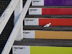 Copenhagen_pantone